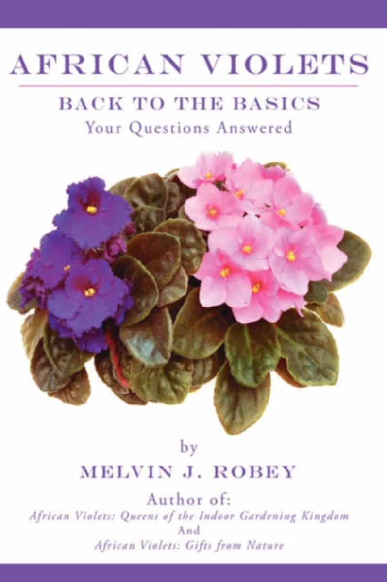 African Violets Back to the Basics