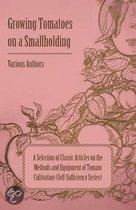 Growing Tomatoes on a Smallholding - A Selection of Classic Articles on the Methods and Equipment of Tomato Cultivation (Self-Sufficiency Series)