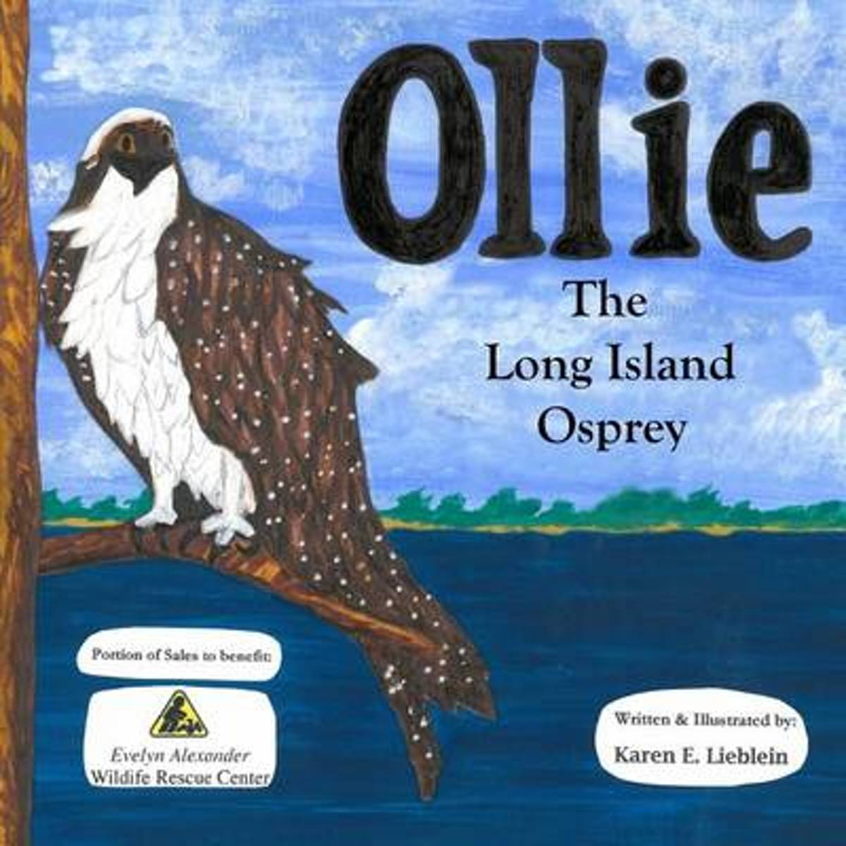 Ollie the Long Island Osprey