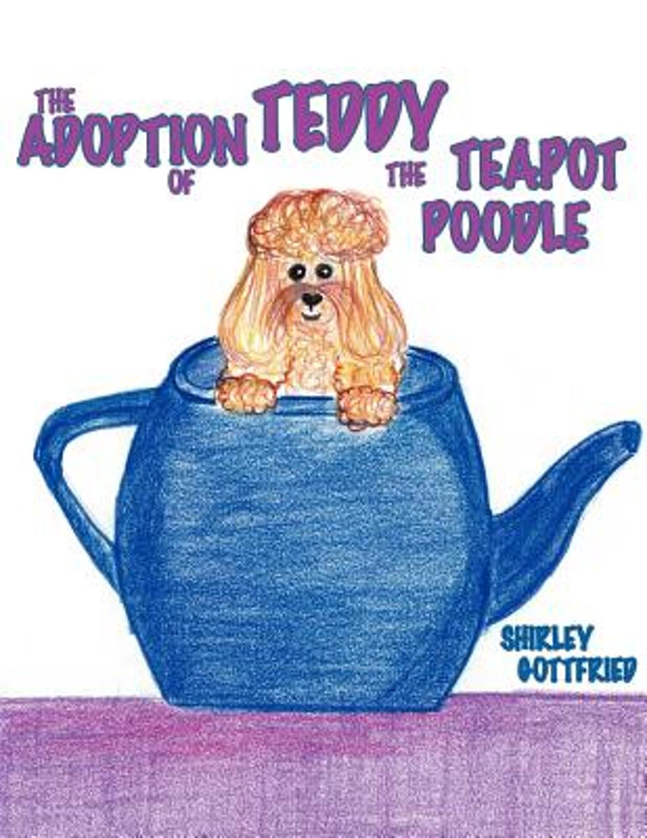 THE Adoption of Teddy the Teapot Poodle