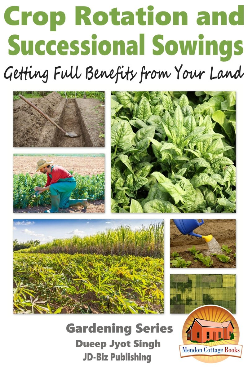 Crop Rotation and Successional Sowings: Getting Full Benefits from Your Land