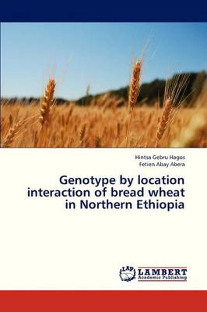Genotype by Location Interaction of Bread Wheat in Northern Ethiopia