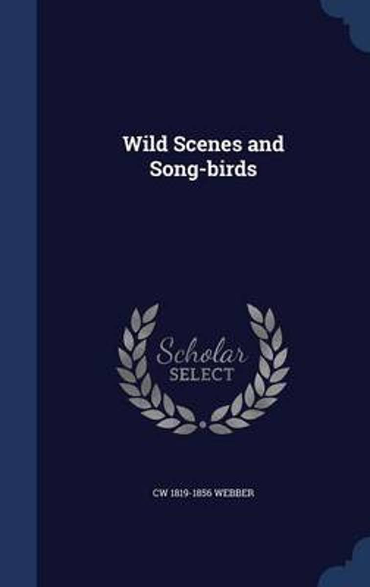 Wild Scenes and Song-Birds