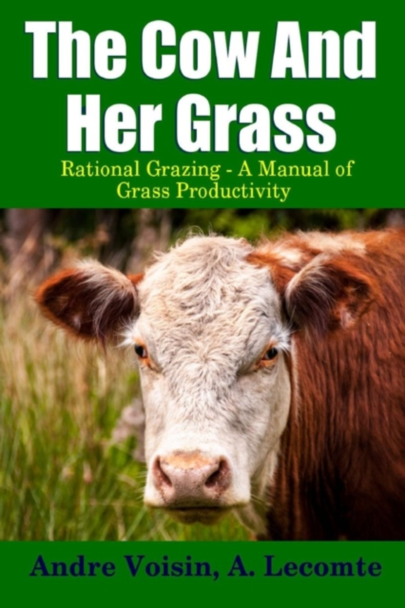 The Cow and Her Grass