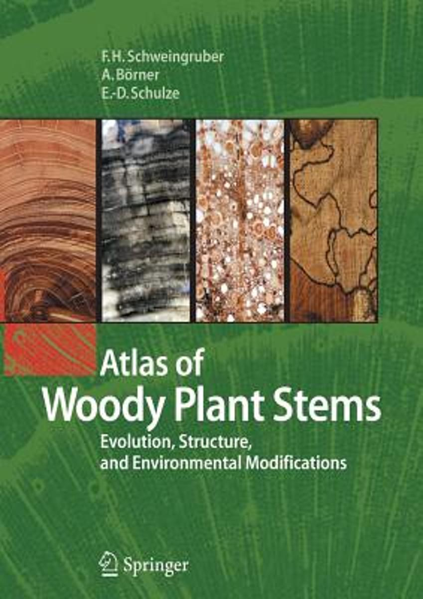 Atlas of Woody Plant Stems