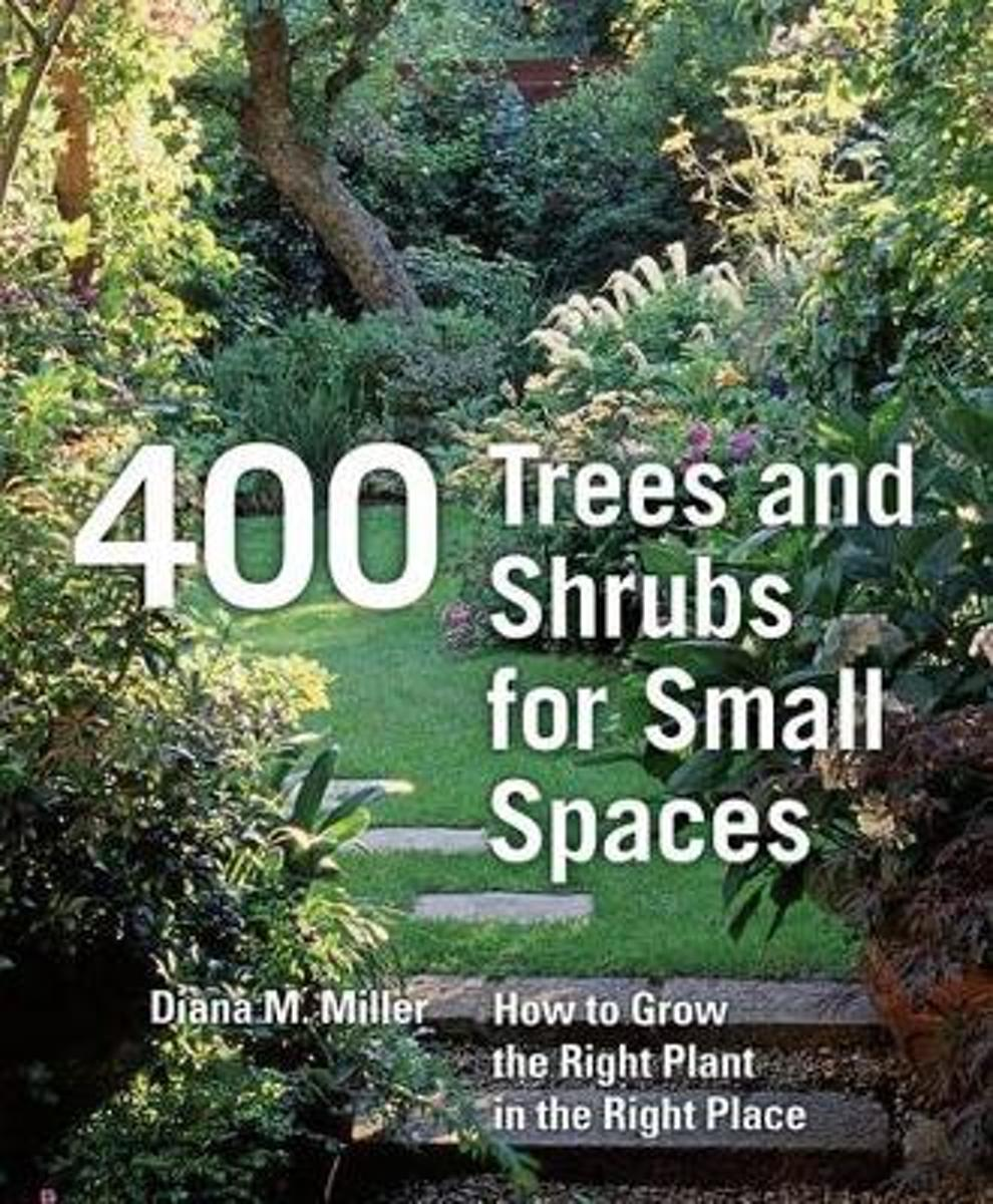 400 Trees and Schrubs for Small Spaces [Hb]