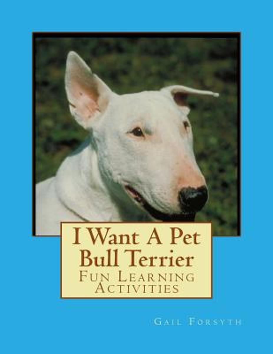I Want a Pet Bull Terrier