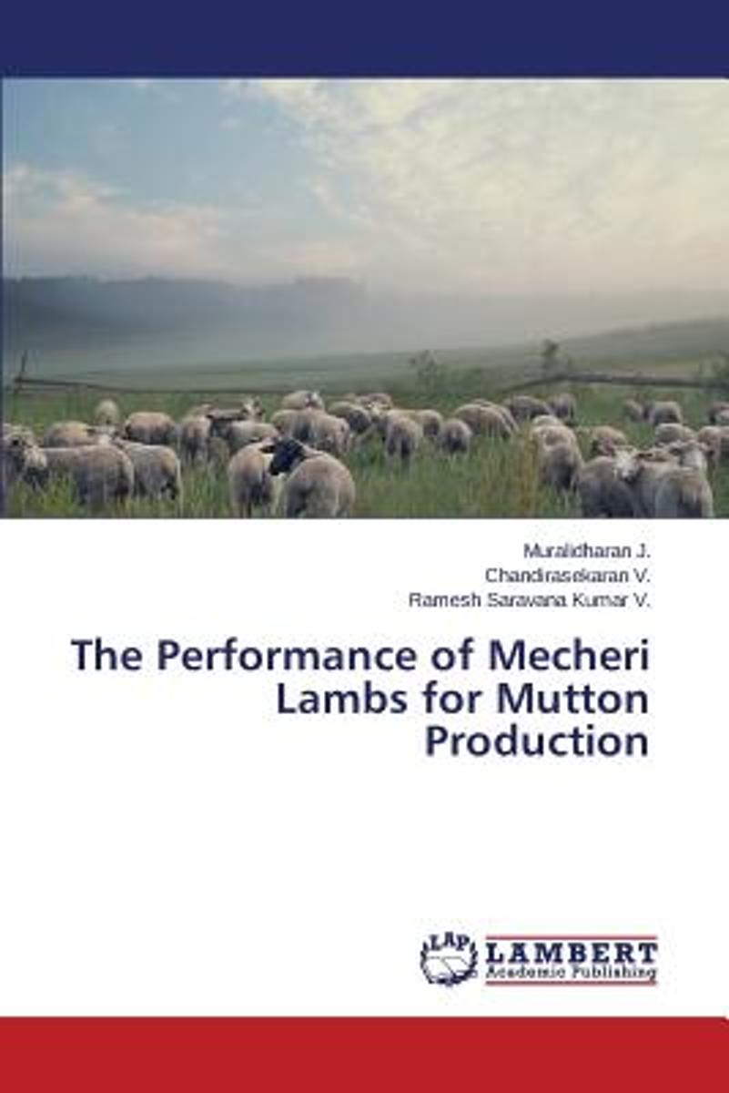 The Performance of Mecheri Lambs for Mutton Production