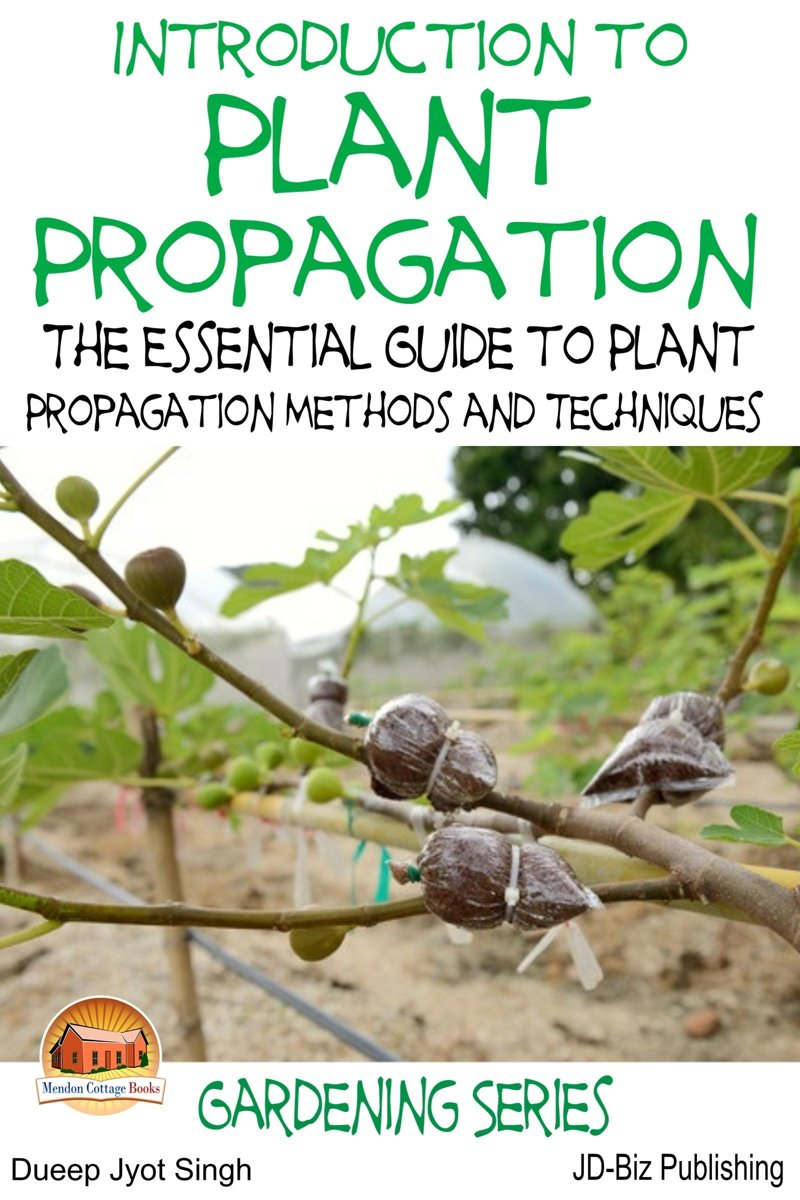 Introduction to Plant Propagation: The Essential Guide to Plant Propagation Methods and Techniques
