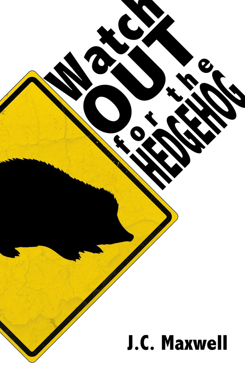 Watch Out For The Hedgehog