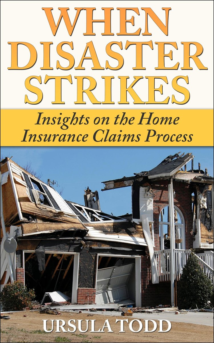 When Disaster Strikes: Insights on the Home Insurance Claims Process