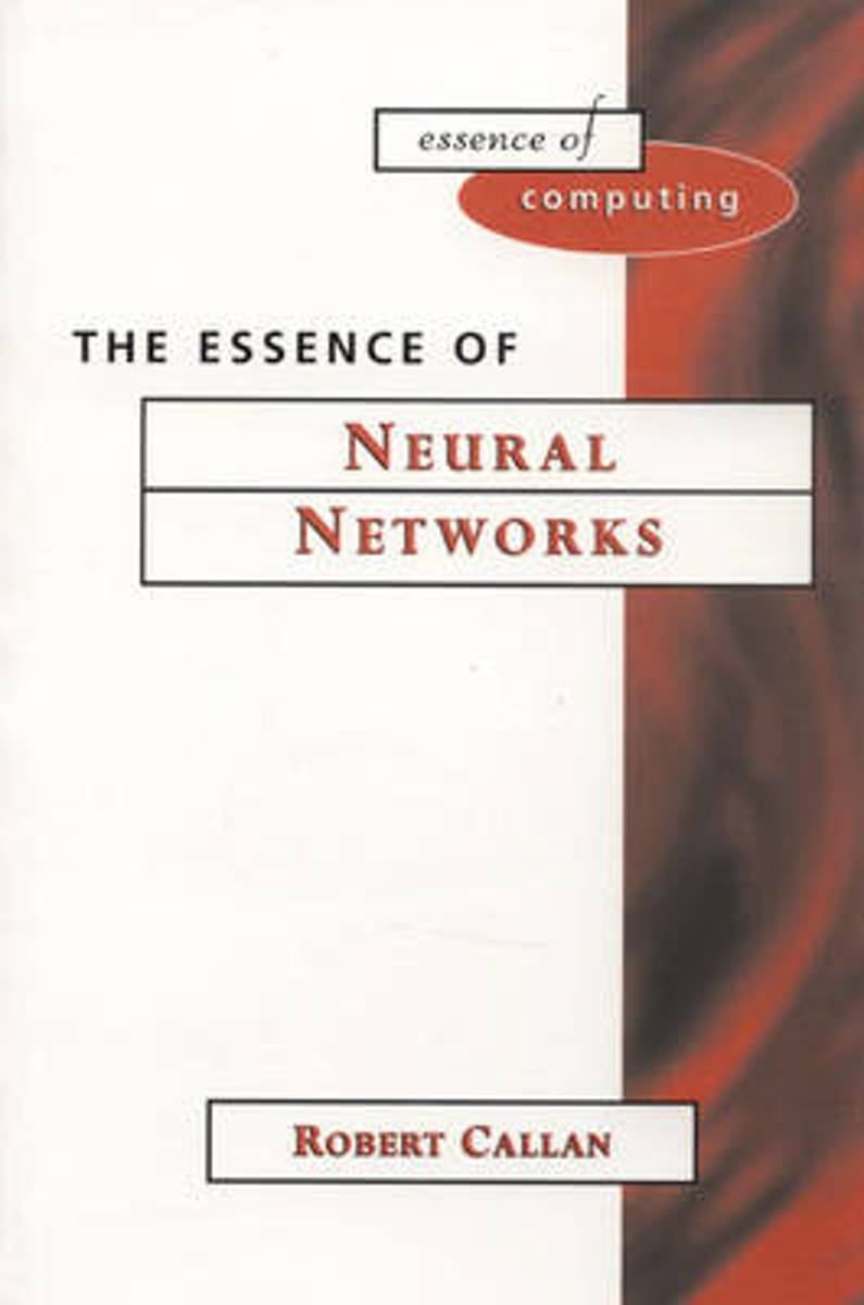 The Essence of Neural Networks