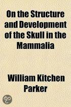 On The Structure And Development Of The