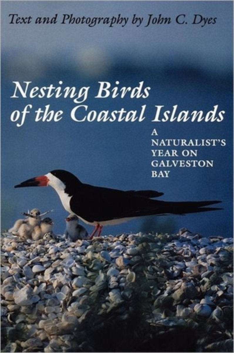 Nesting Birds of the Coastal Islands