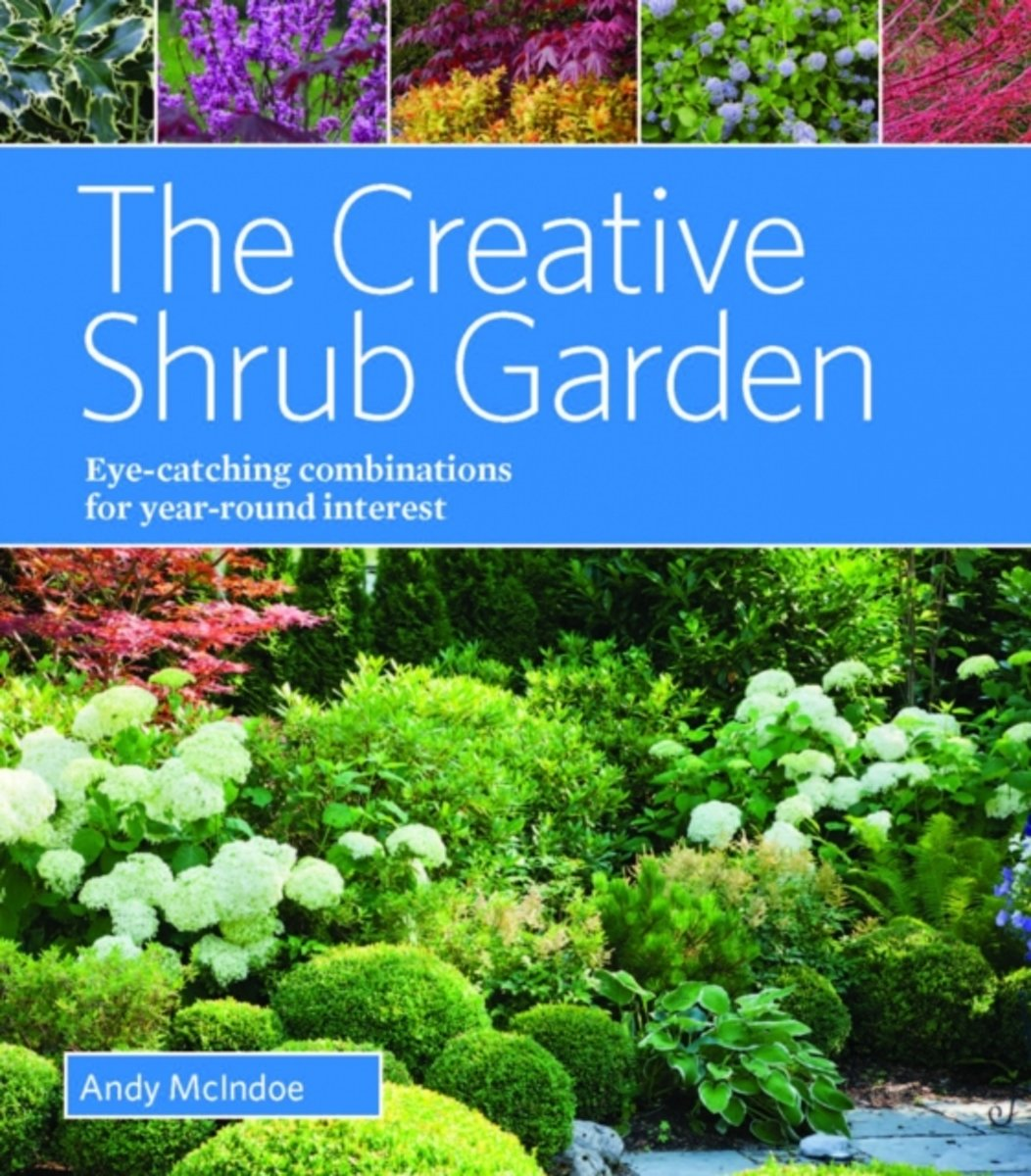 Creative Schrub Garden Eye-Catching Combinations for Year Round Interest