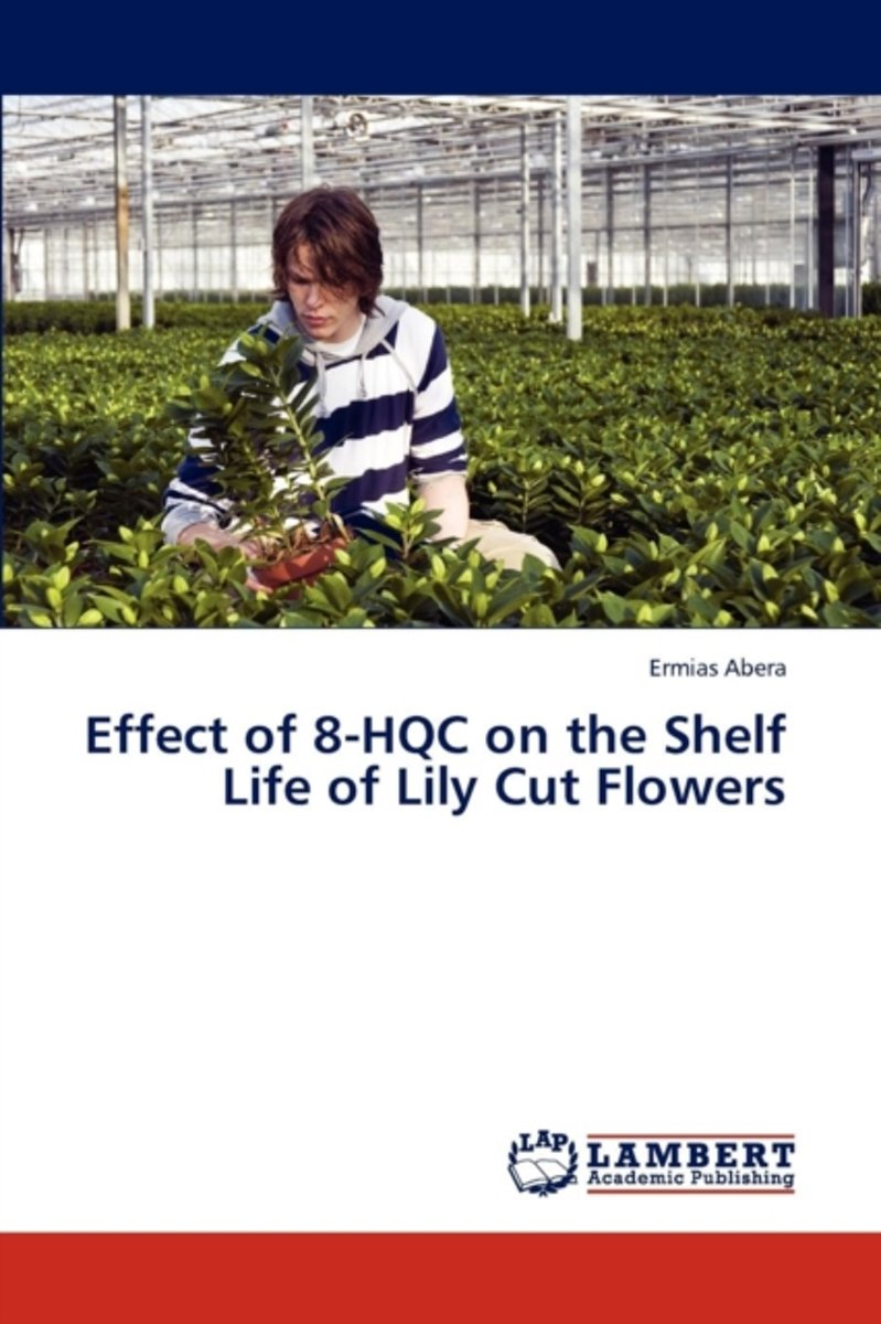 Effect of 8-Hqc on the Shelf Life of Lily Cut Flowers