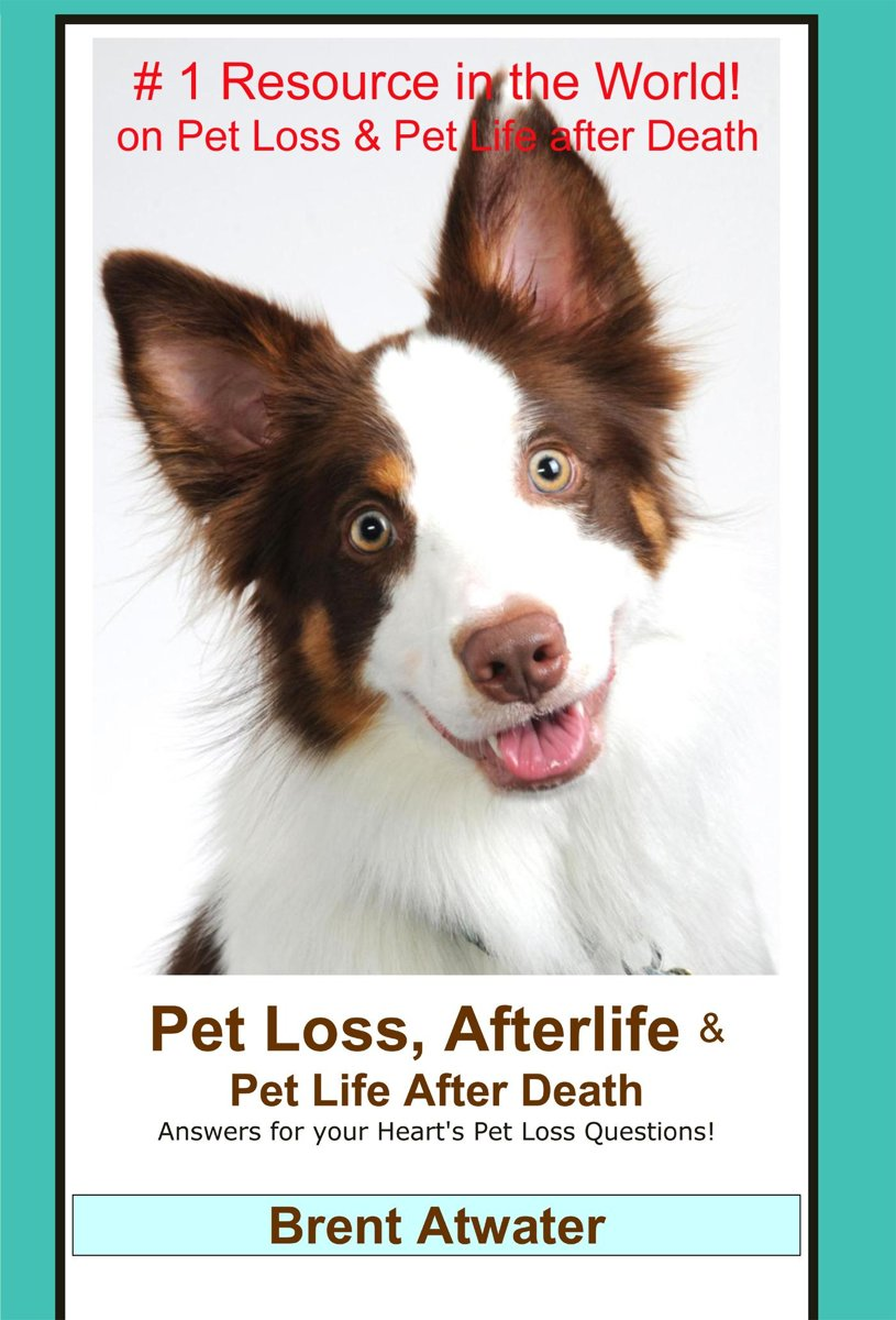 Pet Loss, Afterlife & Pet Life After Death: Answers for all your Heart's Pet Loss Questions