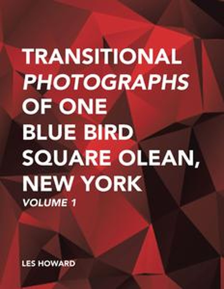 Transitional Photographs of One Blue Bird Square Olean, New York