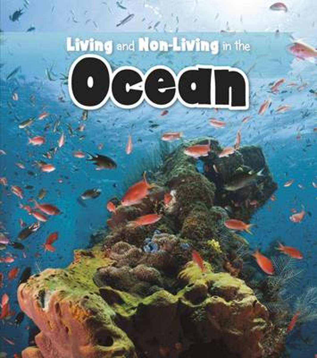 Living and Non-living in the Ocean