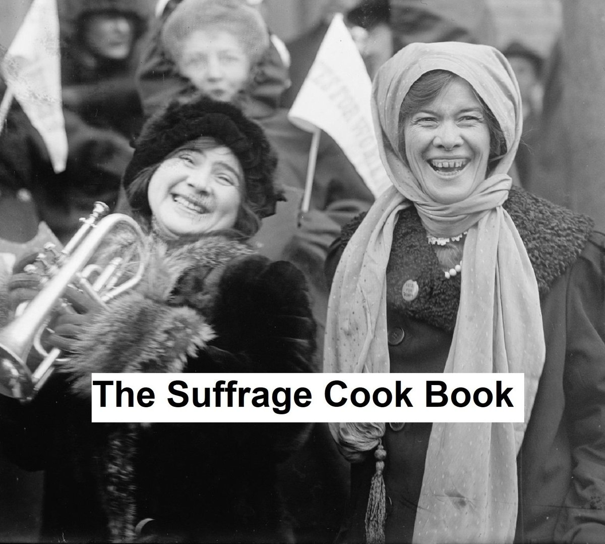 The Suffrage Cook Book, Illustrated