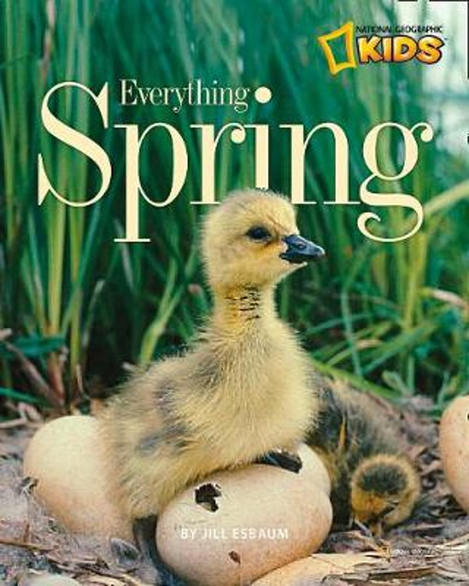 Everything Spring (Everything)