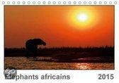 Elephants Africains (Fr-Version)