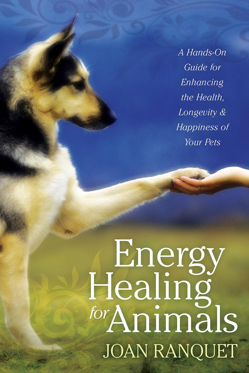 Energy Healing for Animals