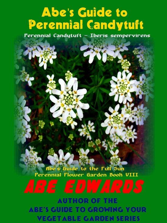 Abe's Guide To Perennial Candytuft