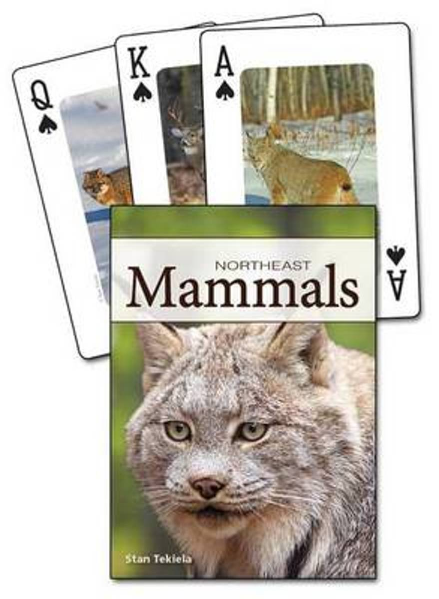 Mammals of the Northeast Playing Cards