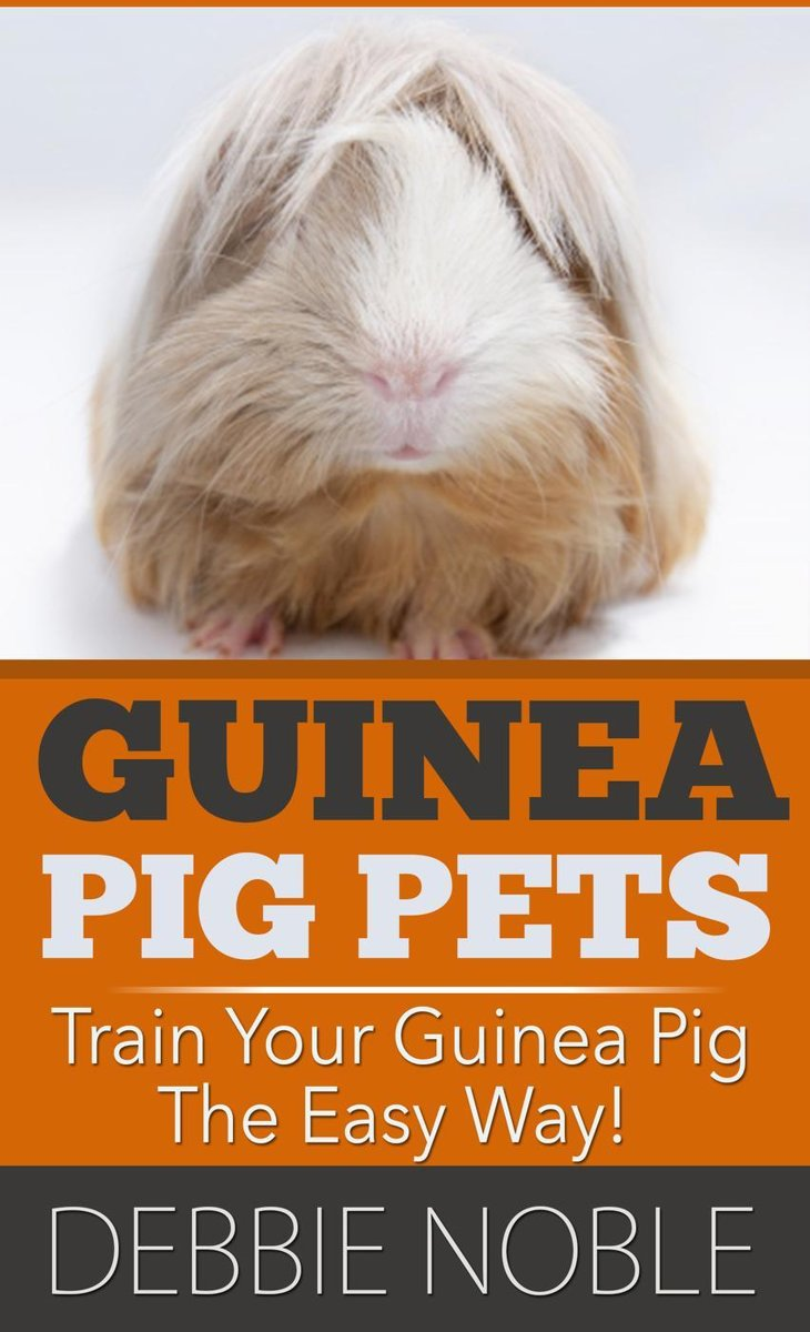 Guinea Pig Pets: Train Your Guinea Pig The Easy Way!