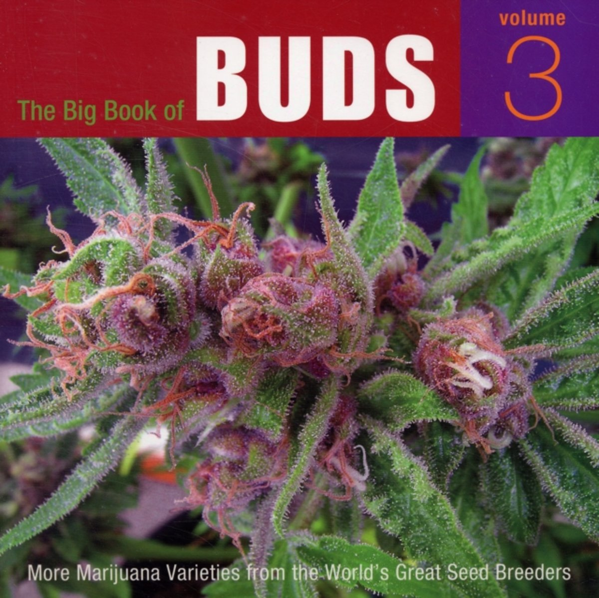 The Big Book Of Buds, Vol. 3