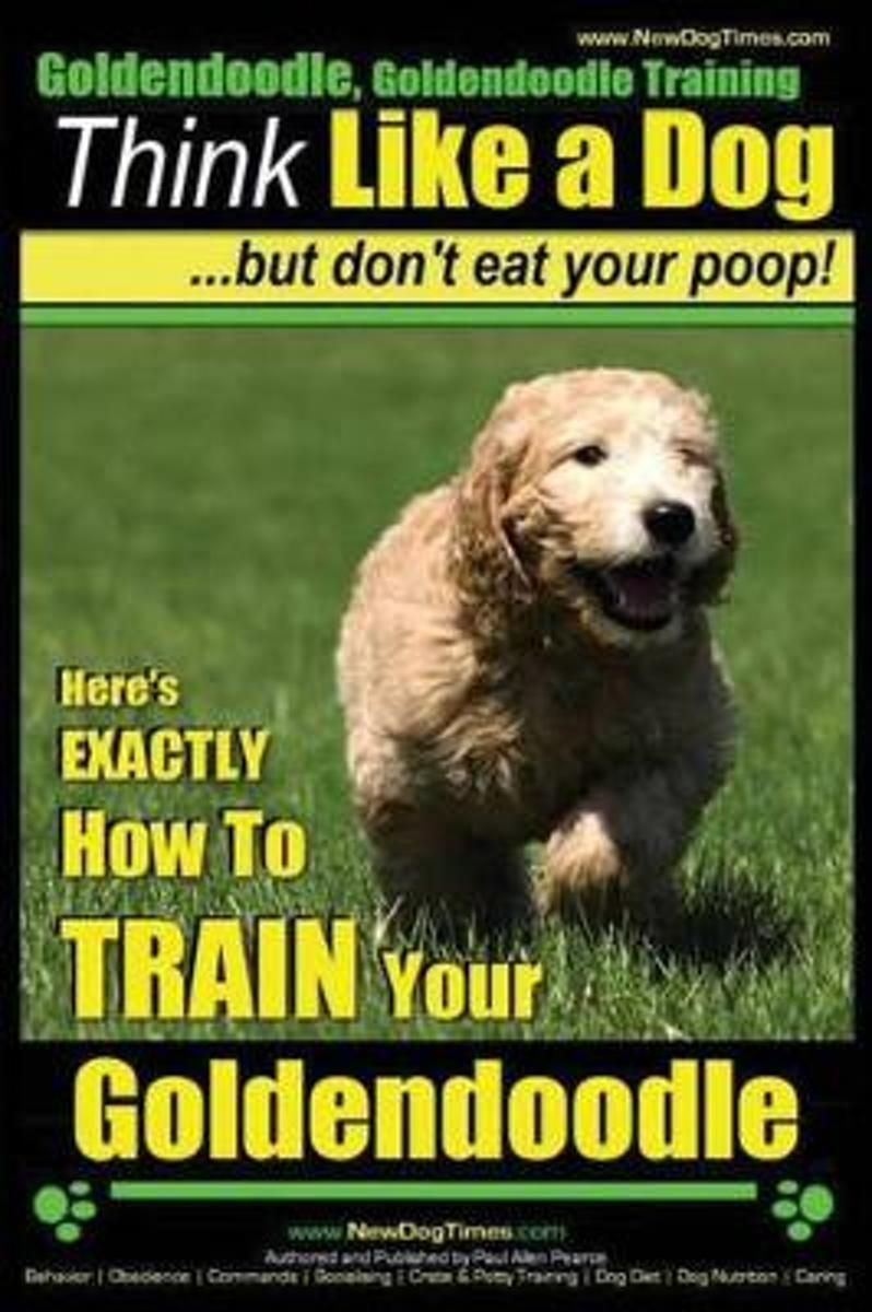 Goldendoodle, Goldendoodle Training - Think Like a Dog But Don't Eat Your Poop!