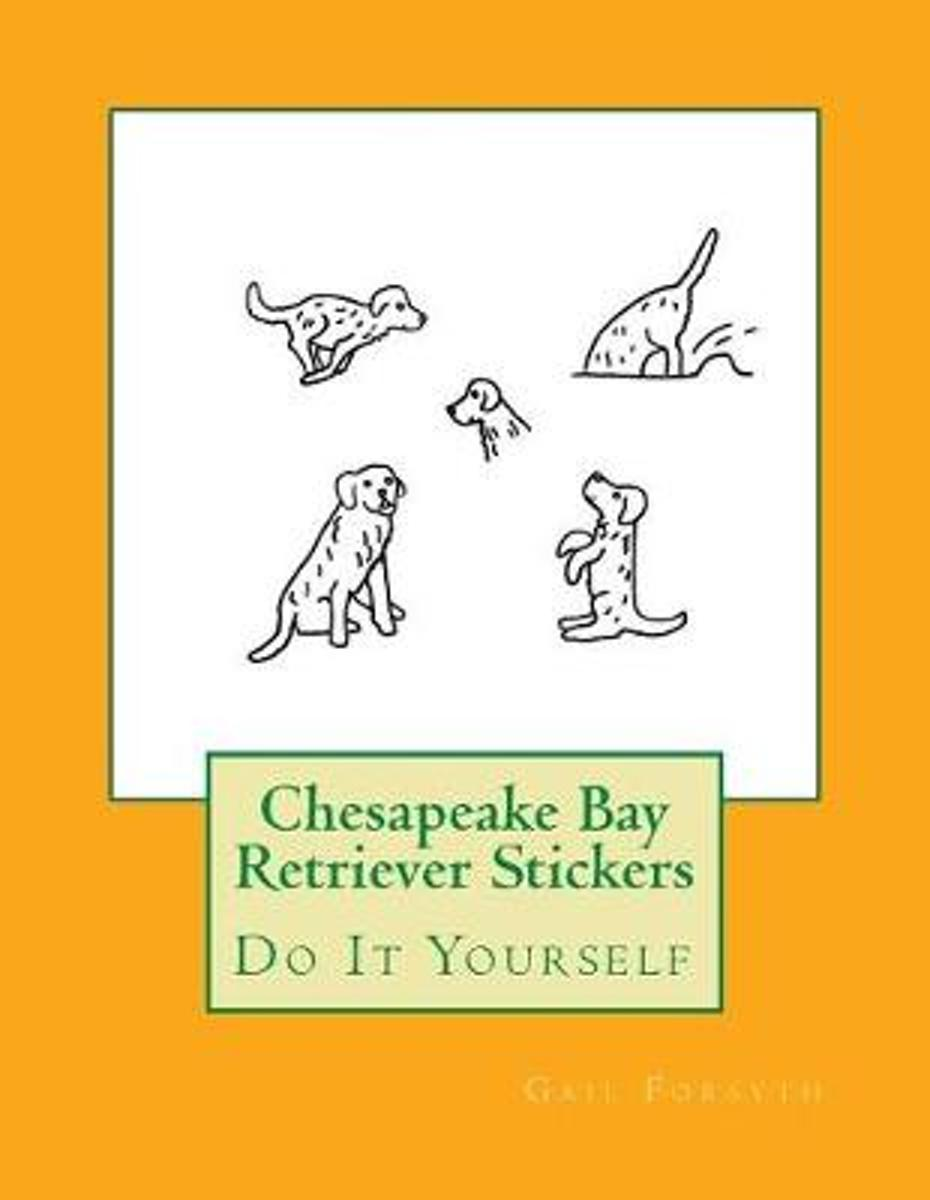 Chesapeake Bay Retriever Stickers