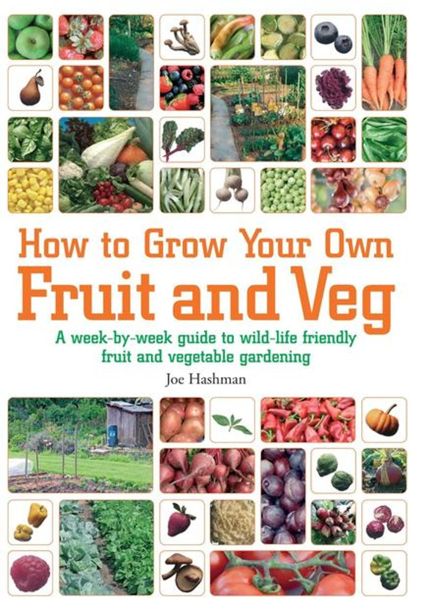 How To Grow Your Own Fruit and Veg
