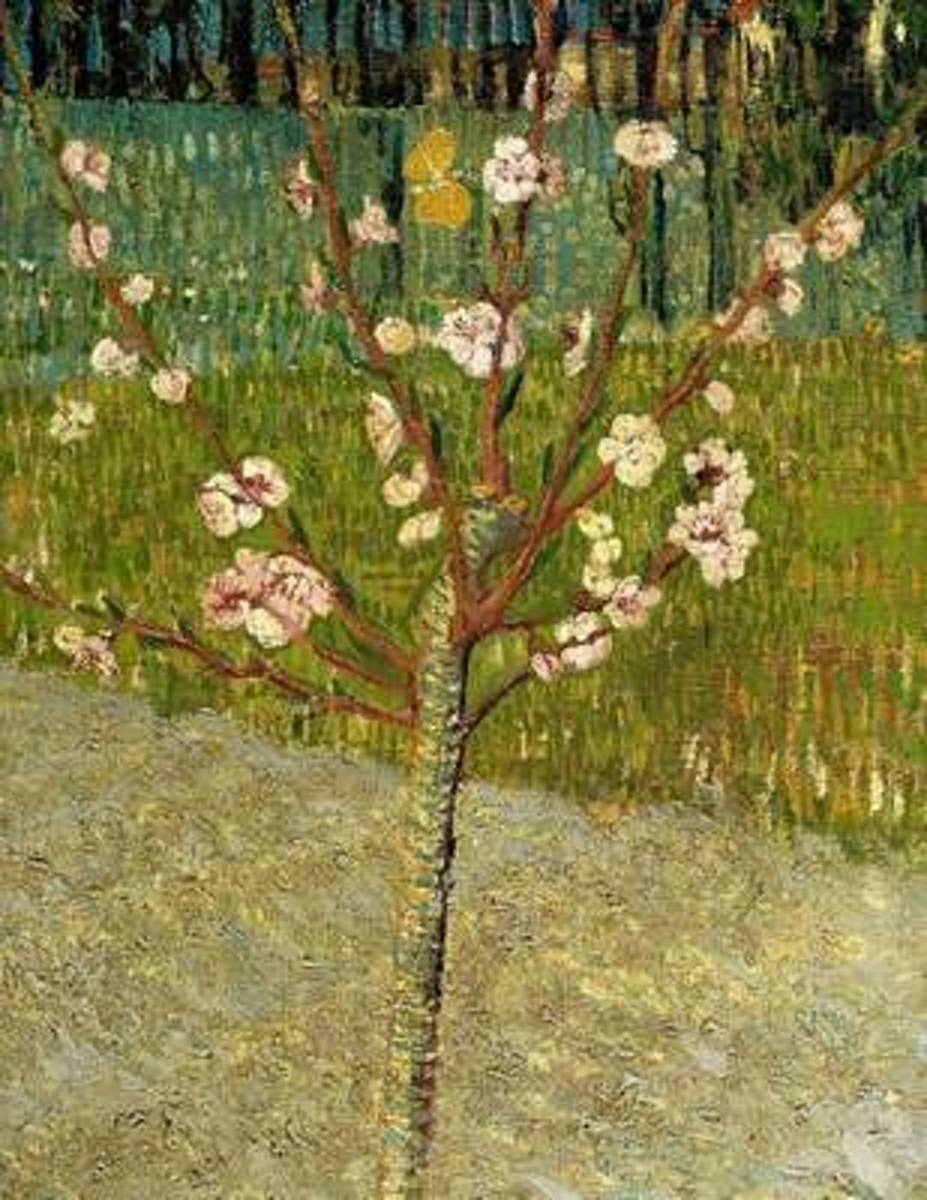 Almond Tree in Blossom, Vincent Van Gogh. Ruled Journal