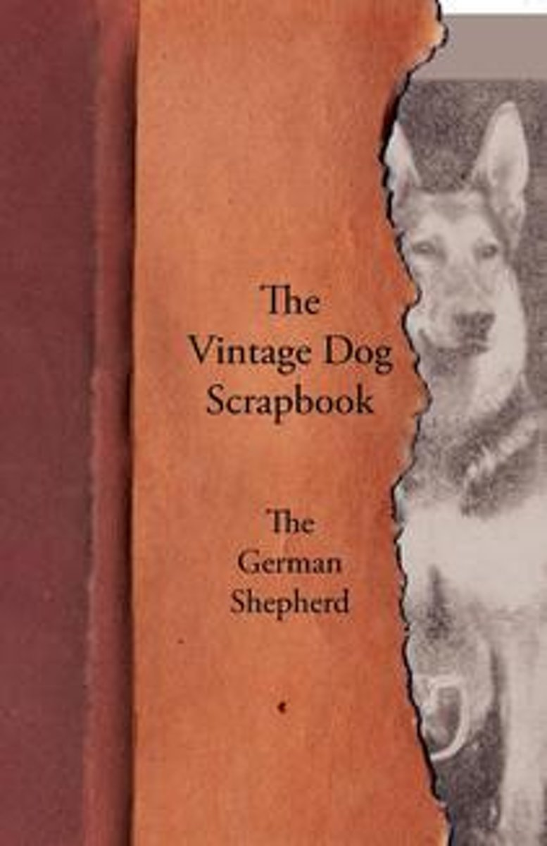 The Vintage Dog Scrapbook - The German Shepherd