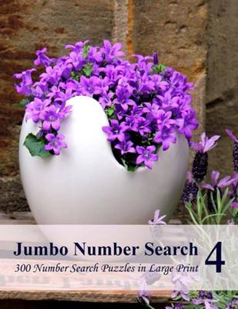 Jumbo Number Search 4