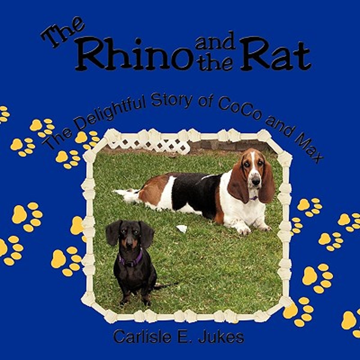 The Rhino and the Rat