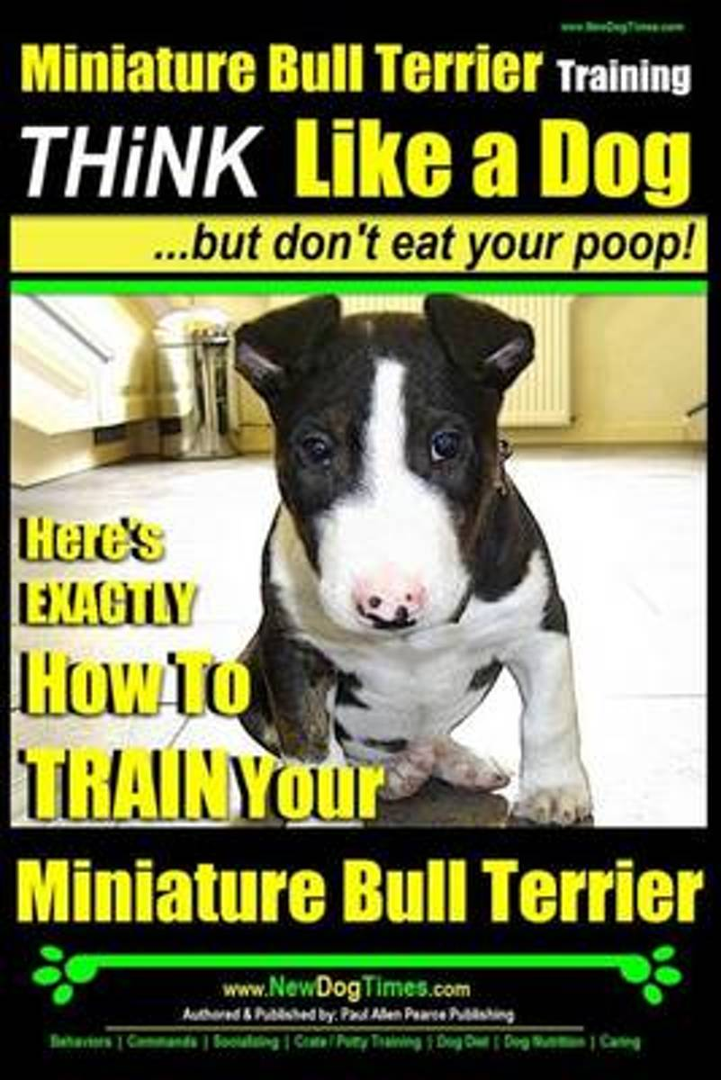 Miniature Bull Terrier Training - Think Like a Dog, But Don?t Eat Your Poop!