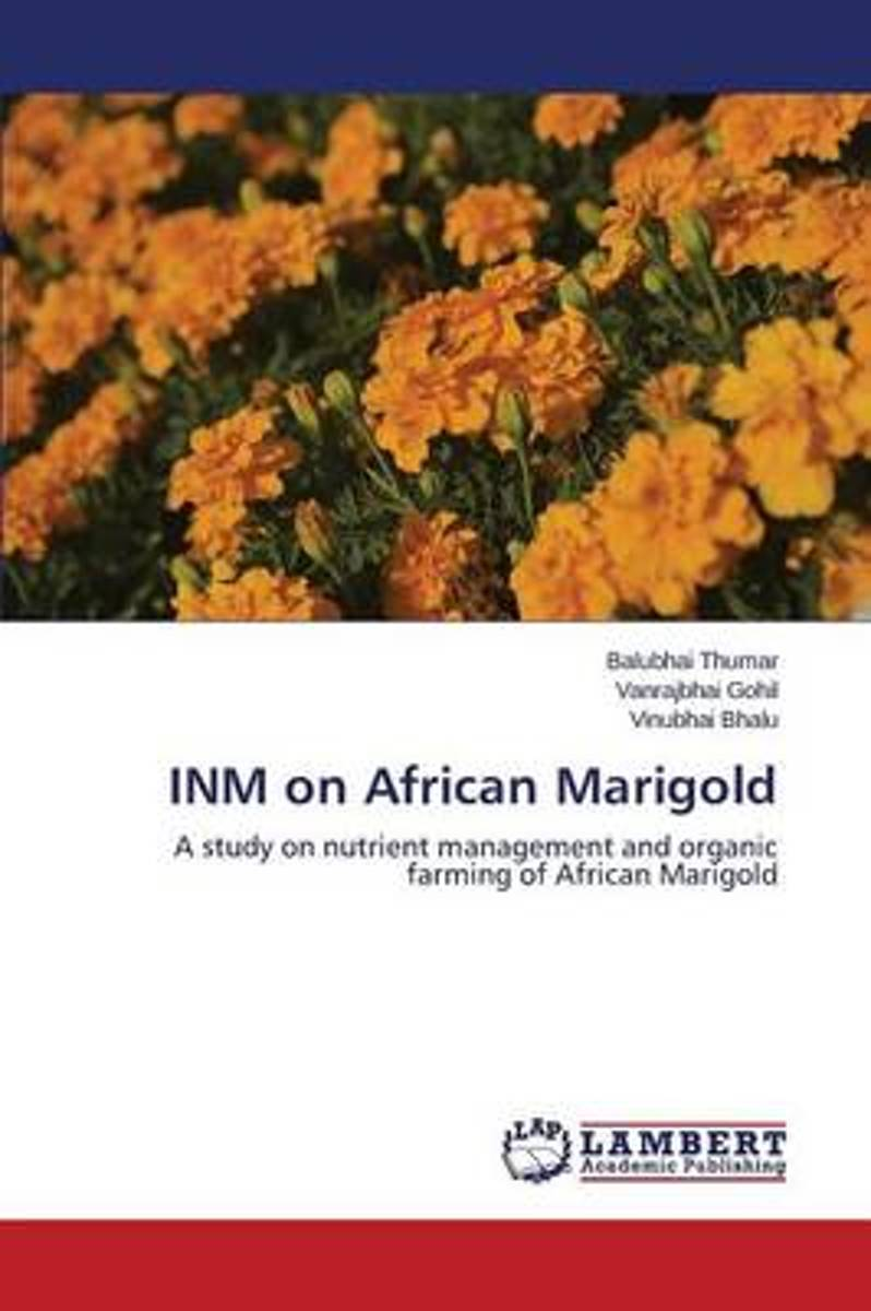 Inm on African Marigold