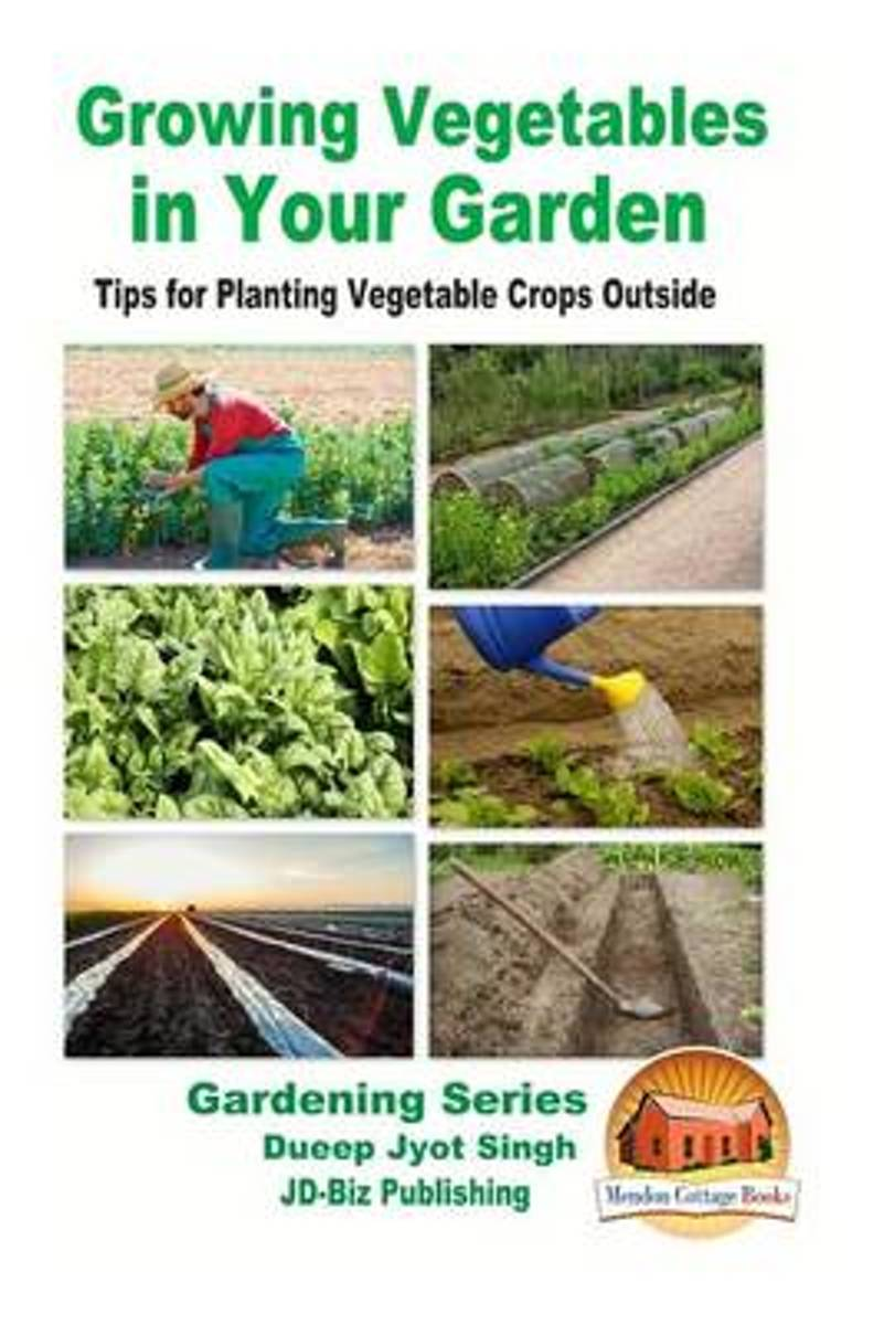 Growing Vegetables in Your Garden - Tips for Planting Vegetable Crops Outside