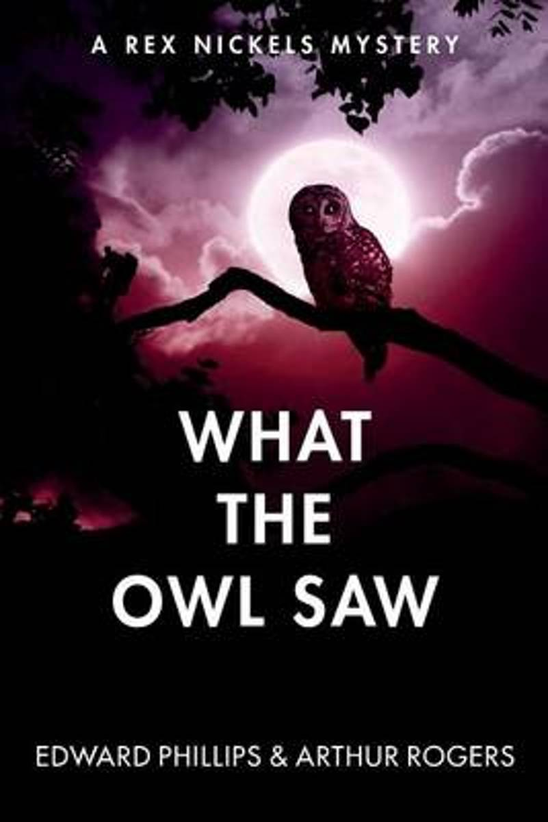 What the Owl Saw