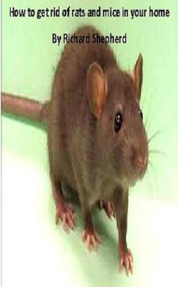 Dealing with rats and mice in your home: kill or humane methods