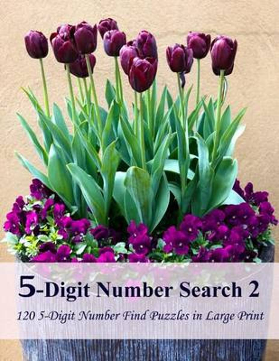 5-Digit Number Search 2