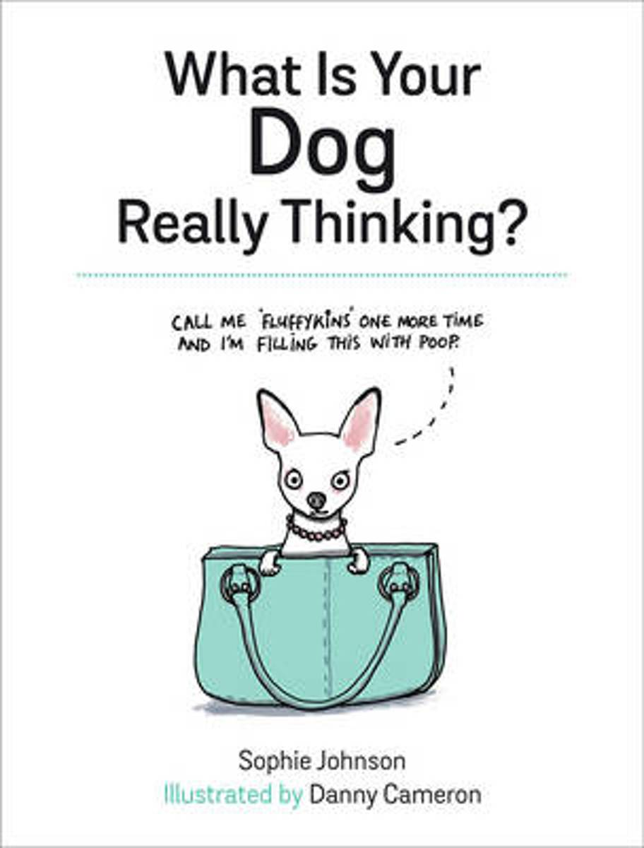 What Is Your Dog Really Thinking?