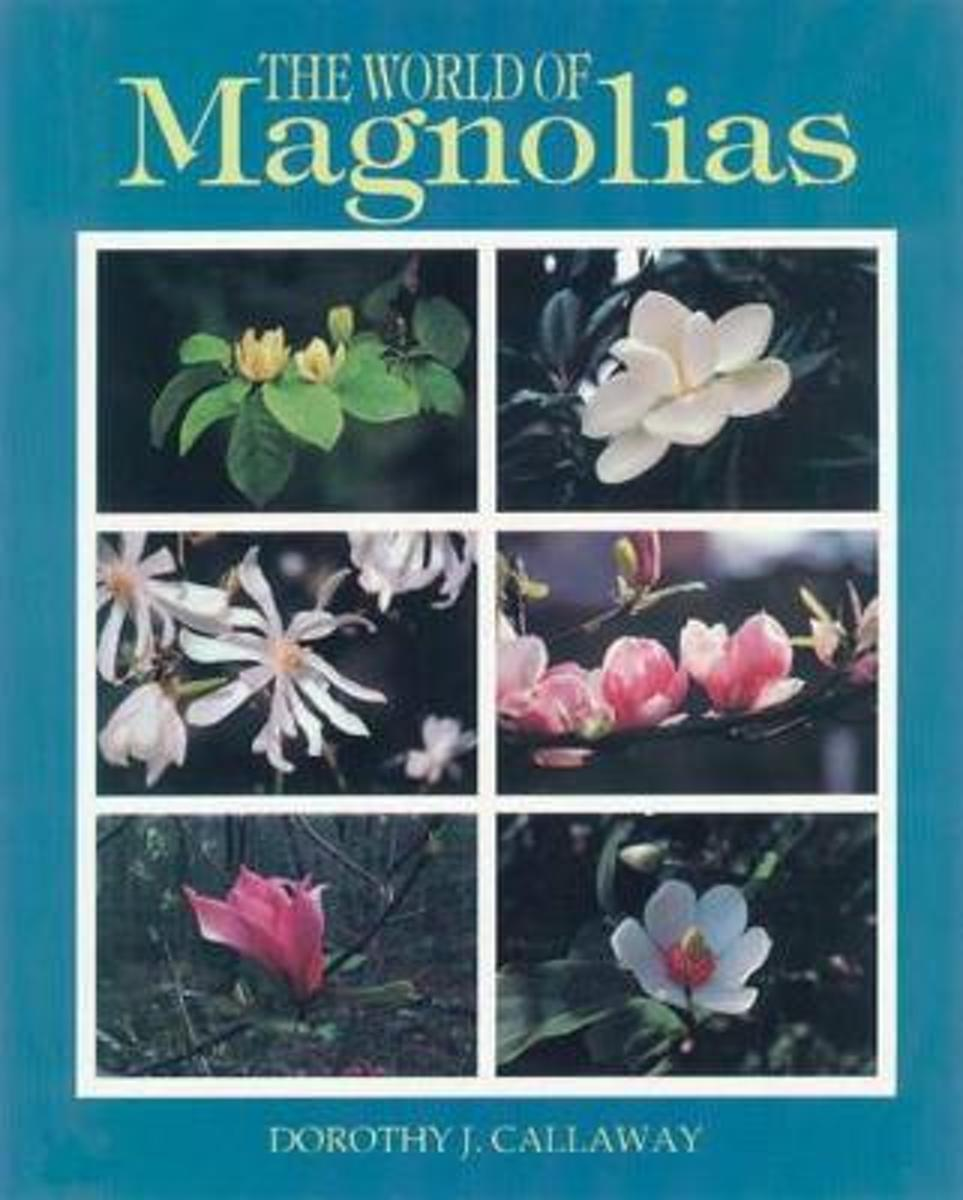 The World of Magnolias