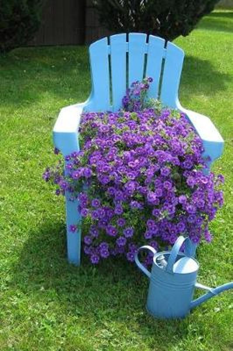 Lush Purple Flowers, a Blue Chair, and a Water Can in the Garden Journal