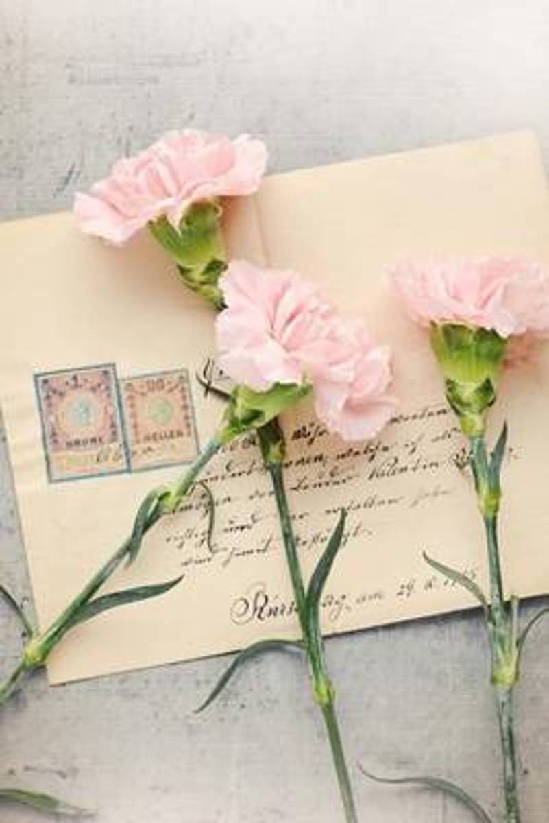 Pink Carnations and Old Love Letters Journal