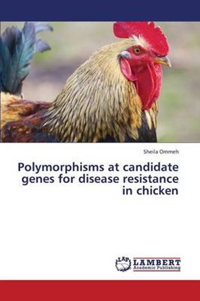 Polymorphisms at Candidate Genes for Disease Resistance in Chicken