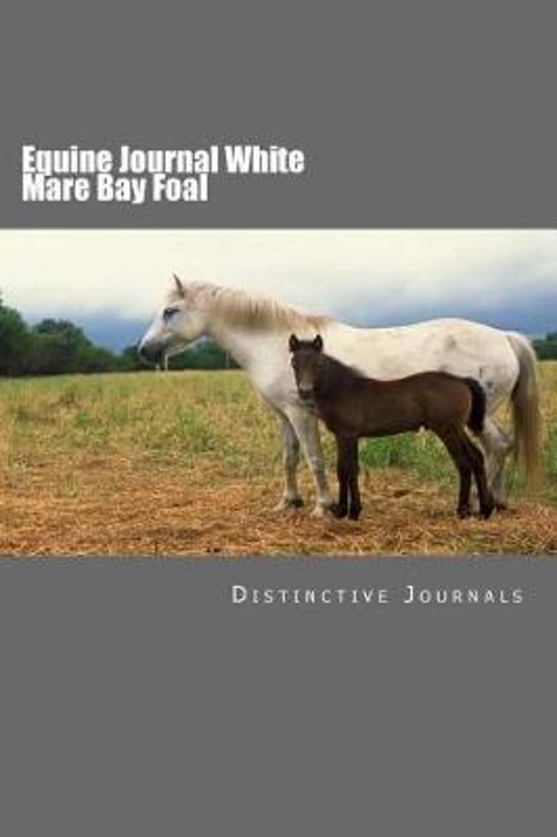 Equine Journal White Mare Bay Foal